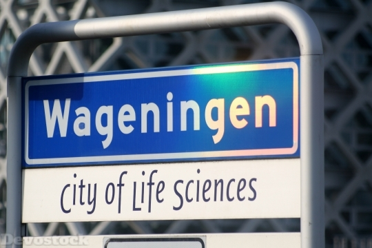 Devostock Wageningen University Student City HD
