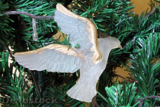 Devostock Dove Christmas Ornament 50741 4K