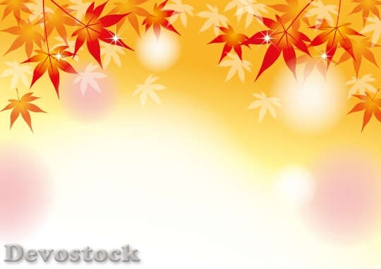 Devostock Fall Leaves Autumn Background
