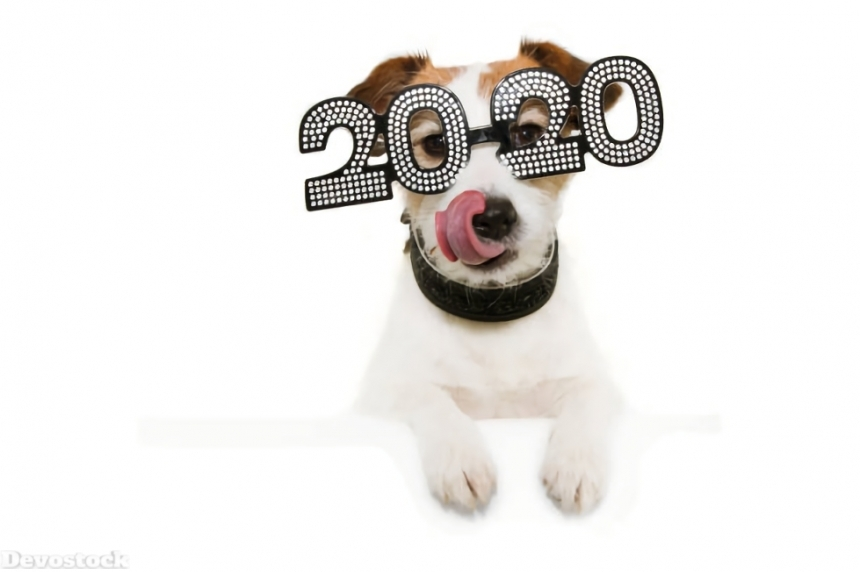 2020 New Year Design HD  (111)