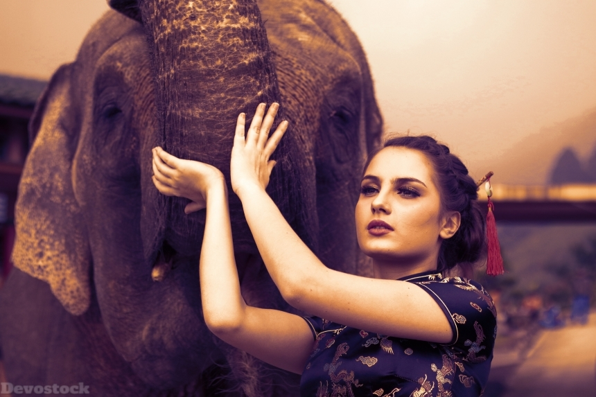 Devostock Beautiful Girl Charming Eyes Animal Elephant 4k