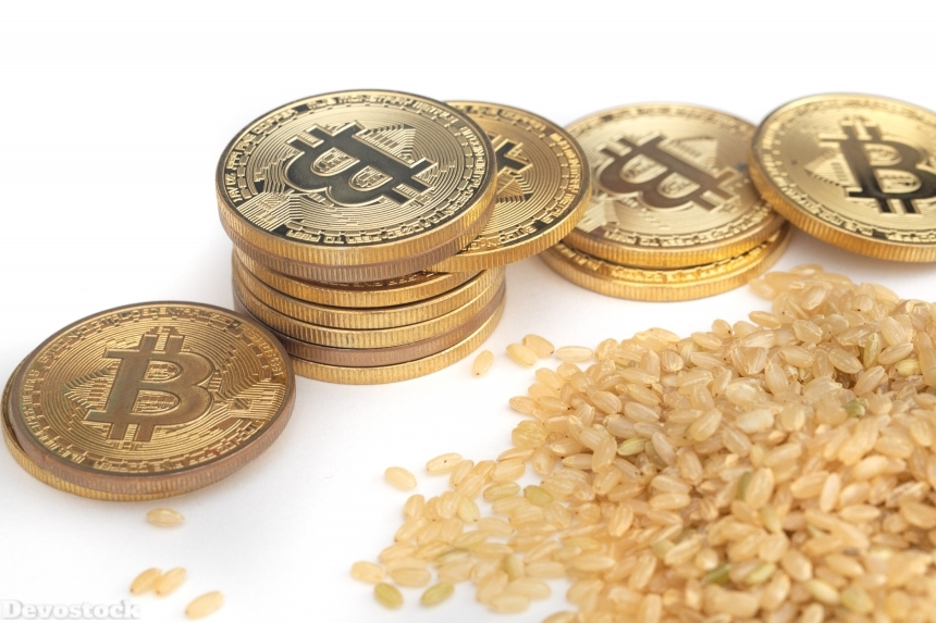 Devostock Bit Coin Brown Rice Economy Sustainability 4k