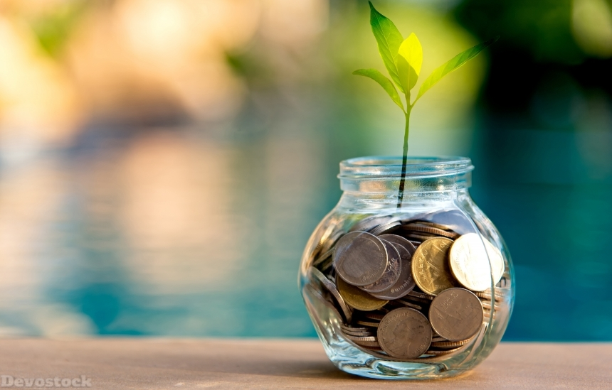 Devostock Coins Plants Jar Save Money Nature 4k