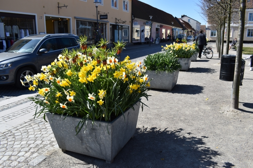 Devostock Exclusive Sweden Nature Skane Simrishamn Spring Car Old Street Colorful Flowers 4k