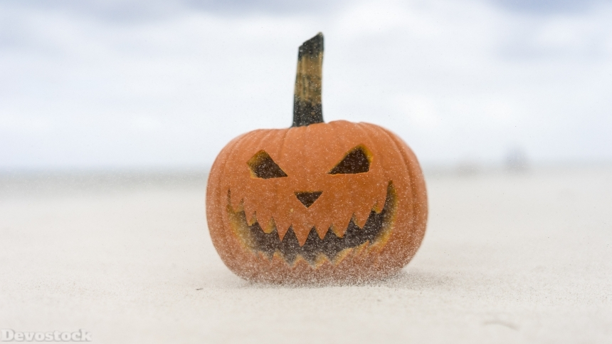 Halloween Celebration pumpkin stock images collection