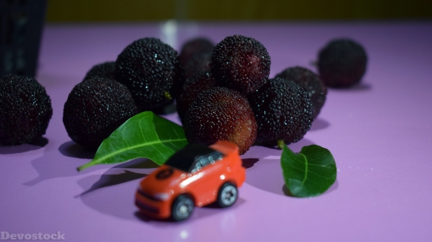 Sweet and sour fruit bayberry  (1)